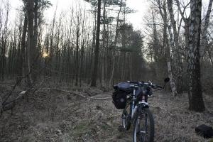 Irgendwo - nirgendwo im Wald, wo es keinen Weg gibt.