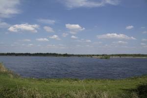 Eine Runde um den Teich herum.