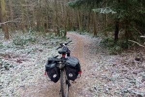 Im Wald ist der Weg auch leicht gefroren.