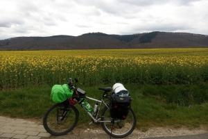 Unterwegs nach Harz
