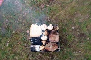 Grillen am Waldsee