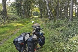 Vollgepackt im Wald