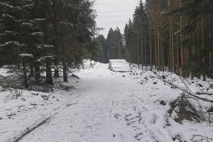 Schneetour auf Süntel - Schnee
