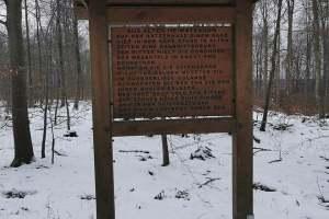 Schneetour auf Süntel - Denkmal
